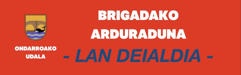 BRIGADA  LAN  DEIALDIA