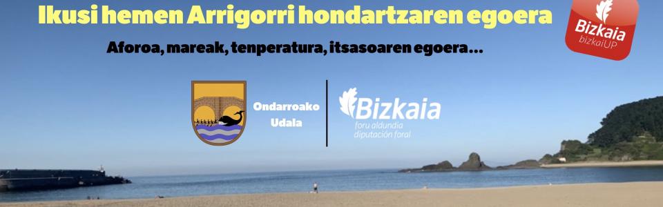 Banner  hondartza